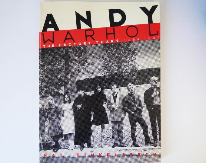 Andy Warhol The Factory Years 1964-1967 Nat Finkelstein