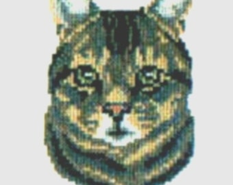 Brown Tabby counted cross-stitch chart
