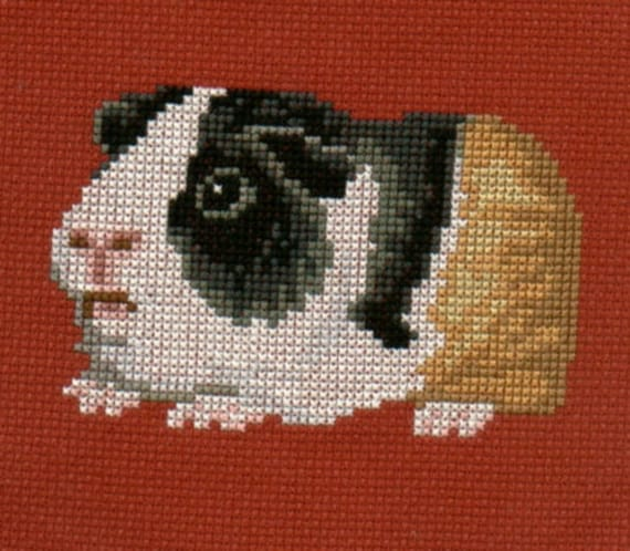 Guinea Pig Counted Cross Stitch Chart Etsy