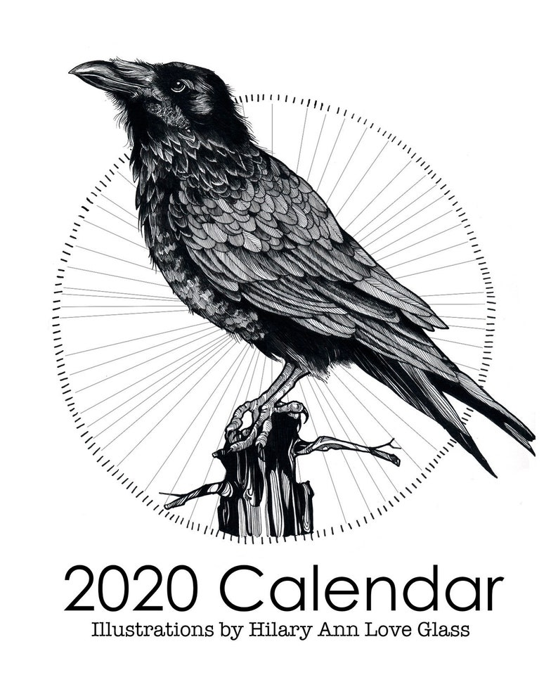 2020 Calendar: Pen and Ink Illustrations birds of Vermont image 0