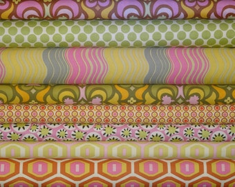 Amy Butler Fabric, Midwest Modern Collection, Full Yard Bundle, 8 Yards Total