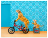 2 FOR 1 SALE - Tiger animal art print with BMX Bicycle