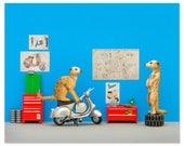 2 FOR 1 SALE: Vespa scooter animal art print