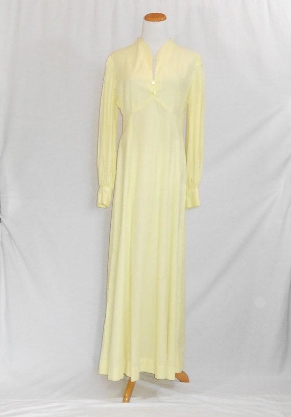 70's Maxi Dress Empire Waist Dress Swiss Dot Dres… - image 5