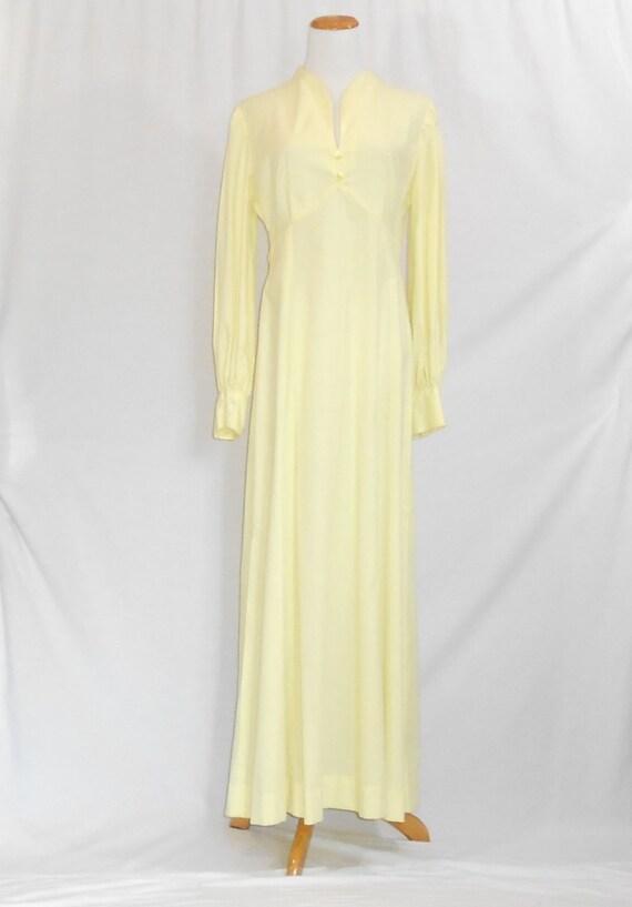 70's Maxi Dress Empire Waist Dress Swiss Dot Dres… - image 2