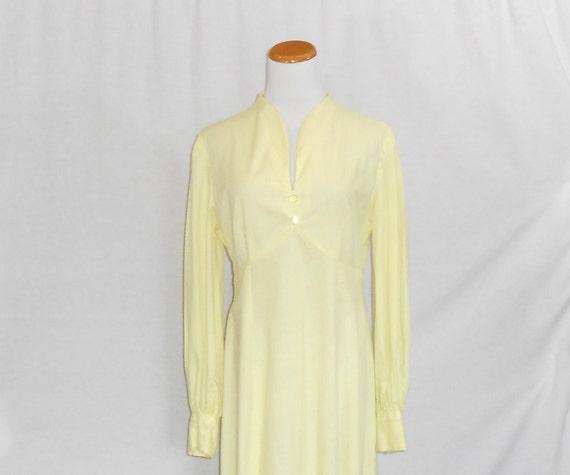 70's Maxi Dress Empire Waist Dress Swiss Dot Dres… - image 1