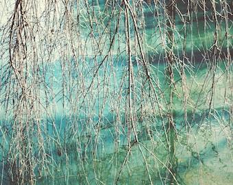 Abstract art, nature photography, teal wall art, nature prints, bohemian art, boho decor, fine art photography, nature wall art, teal art