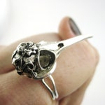 Silver Bird Skull Ring - Macabre Jewelry - Crow Raven Ring - Steampunk Bird Skull Jewelry Hummingbird - Womens Wiccan Jewelry Pagan Gift