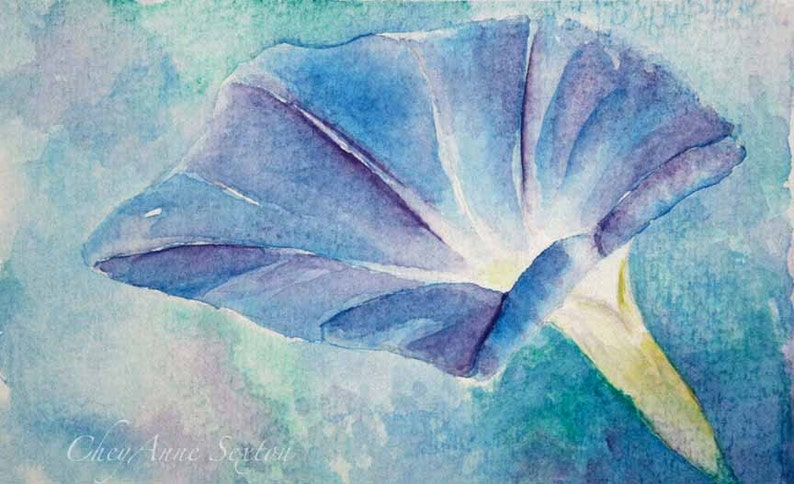 watercolor flower art  Blue Morning Glory  Mother's Day image 0