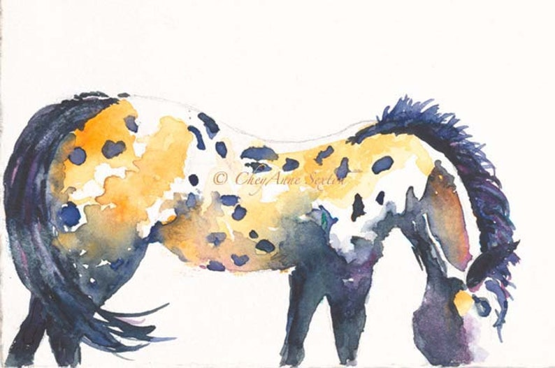Appaloosa painting Watercolor Horse Study New Mexico  equine image 0