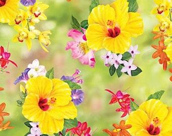 Hummingbird Garden Floral Toss- Quilting Treasures - Half Yard