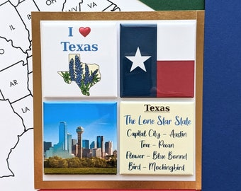 Texas Magnets - Dallas Skyline - Set of Four Magnets - State Magnets