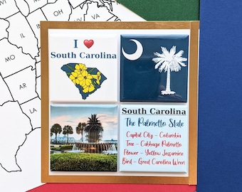 South Carolina Magnet Set - Charleston Fountain - Set of Four Magnets - State Magnets