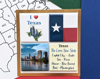 Texas Magnets - Austin Skyline - Set of Four Magnets - State Magnets