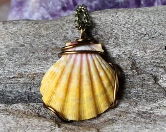 Hawaii Sunrise Necklace - Hawaiian Sunnie Jewelry - Sunrise Shell Jewelry - Sunrise Seashell Necklace - Seashell Mermaid Jewelry from Hawaii