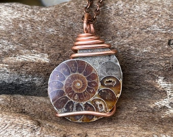 Ammonite Necklace, Fossil Jewelry