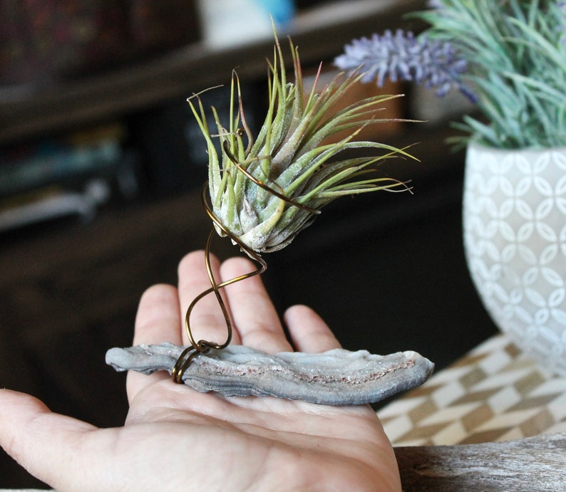 Chalcedony Air Plant Holder w/ Bronze Wire  Boho Chic Home image 0