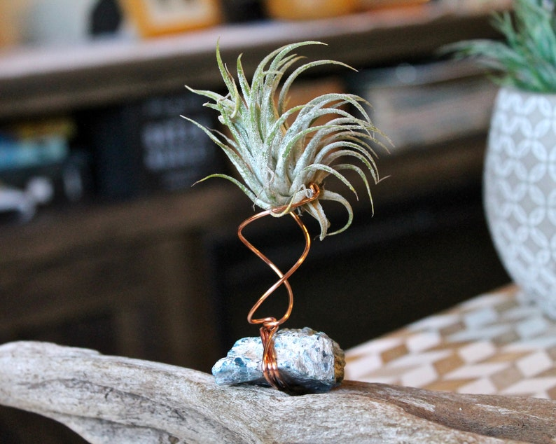 Stone Air Plant Holder w/ Blue Apatite & Copper Wire  Hippie image 0