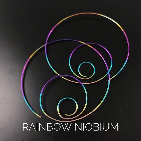 Large  Hypoallergenic Rainbow Niobium Hoops.  Nickel free  Cecile Stewart Jewelry