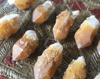 Natural Golden Healer Quartz Connecticut Found Raw Spirit Cactus Quartz Crystal Crystals
