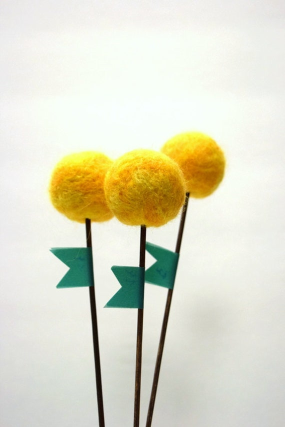 Yellow pom pom flowers craspedia billy balls billy ball mightylinksfo