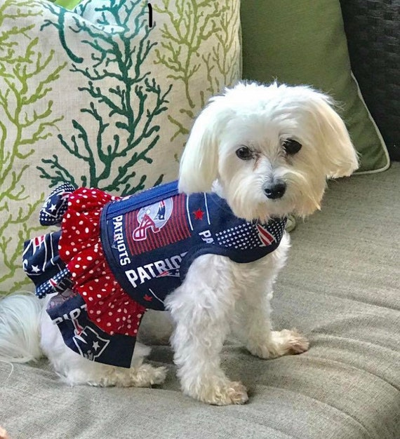 release date: c2273 47e9c Small dog harness, New England Patriots Made in USA, dog harnesses, pet  clothing,