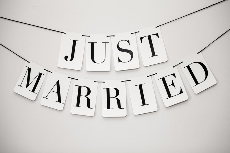 Just Married Banner: Double Strand image 0