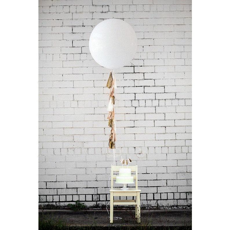 Balloon Tassels: Blush w/White Balloon image 0