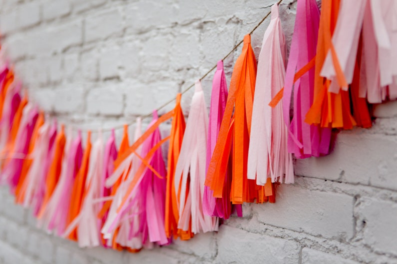 Tassel Party Garland: Hot Pink image 0