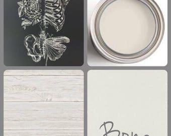 LTD  Wise Owl Paint Color-BONE (quart)
