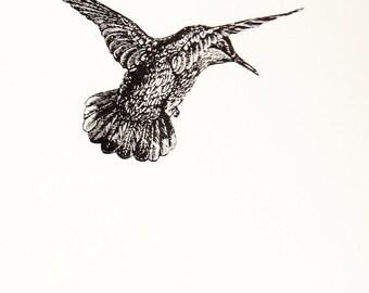 Hummingbird Notepad (Bird Pad Series)
