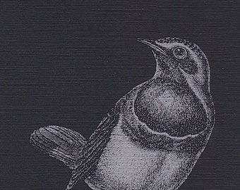 Metallic Bluethroat Notepad (Bird Pad Series)