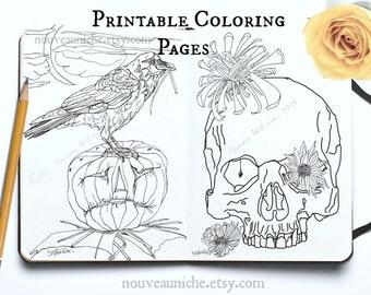 Dark Arts Printable Coloring Page Printable Decor DIY Decor Owl Crow Skull Jack-O-Lantern Spider Web Mandala Witchy Decor