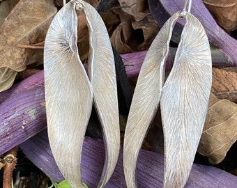 Double Begonias