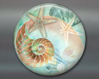 "3.5"" beach fridge magnet, starfish magnet, kitchen decor, seaside beach decor, housewarming gift, big magnet for fridge MA-BCH-6"