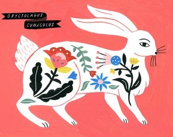 Rabbit, Ryctolagus Cuniculus/Folk Science Series) by Sarah Walsh