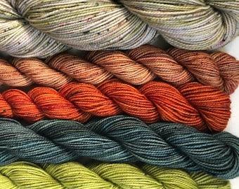 FOLKCITY Fiber Studio Hand-dyed Sock Yarn Set: Sock Palette
