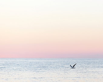 lake photography-bird photography-Door County photo-bird on lake photo-lake sunset ( Original fine art photography prints- FREE Shipping