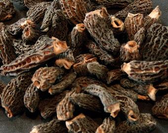 1.1oz / 30g Dried Wild Morels - Raw, Naturally Organic, Sustainably Harvested Montana Mushrooms, Sun Dried - morchella elata MRL014