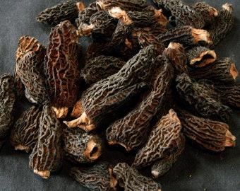 1.1oz / 30g Dried Wild Morels - Raw, Naturally Organic, Sustainably Harvested Montana Mushrooms, Sun Dried - morchella elata MRL003