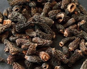 1.1oz / 30g Dried Wild Morels - Raw, Naturally Organic, Sustainably Harvested Montana Mushrooms, Sun Dried - morchella elata MRL005