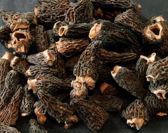 1.1oz / 30g Dried Wild Morels - Raw, Naturally Organic, Sustainably Harvested Montana Mushrooms, Sun Dried - morchella elata MRL004