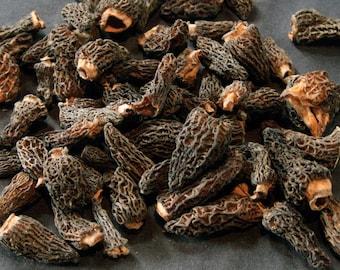 1.1oz / 30g Dried Wild Morels - Raw, Naturally Organic, Sustainably Harvested Montana Mushrooms, Sun Dried - morchella elata MRL010