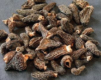 1.1oz / 30g Dried Wild Morels - Raw, Naturally Organic, Sustainably Harvested Montana Mushrooms, Sun Dried - morchella elata MRL001