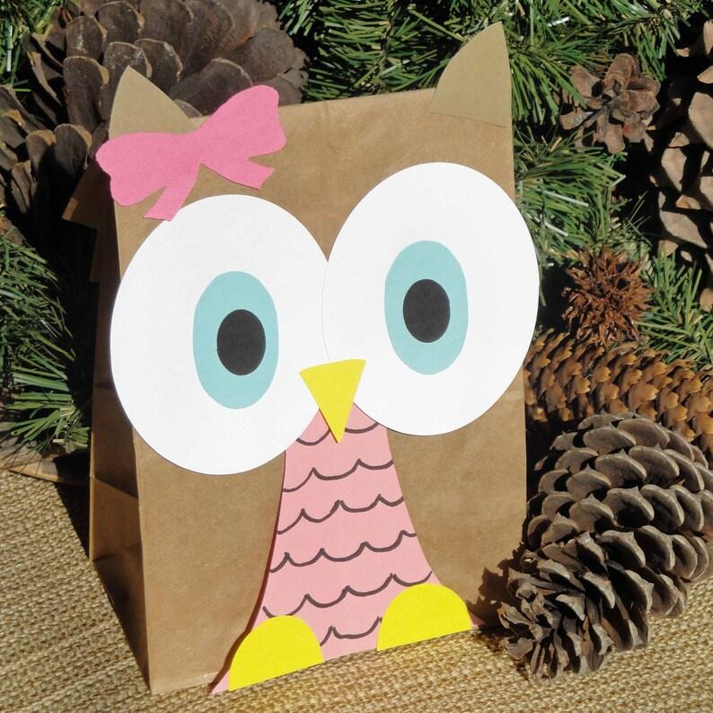 Hoot Owl Treat Sacks  Woodland Forest Bird Valentines Theme image 0