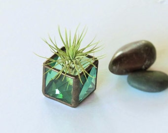 Mini Air Plant Holder Green Stained Glass Terrarium Cubed Glass Box Planter