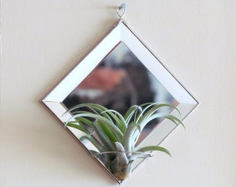 Geometric Air Plant Holder Diamond Shaped Beveled Mirror Wall Hanging Plant Holder Silver Colored Minimal Decor Made in Canada
