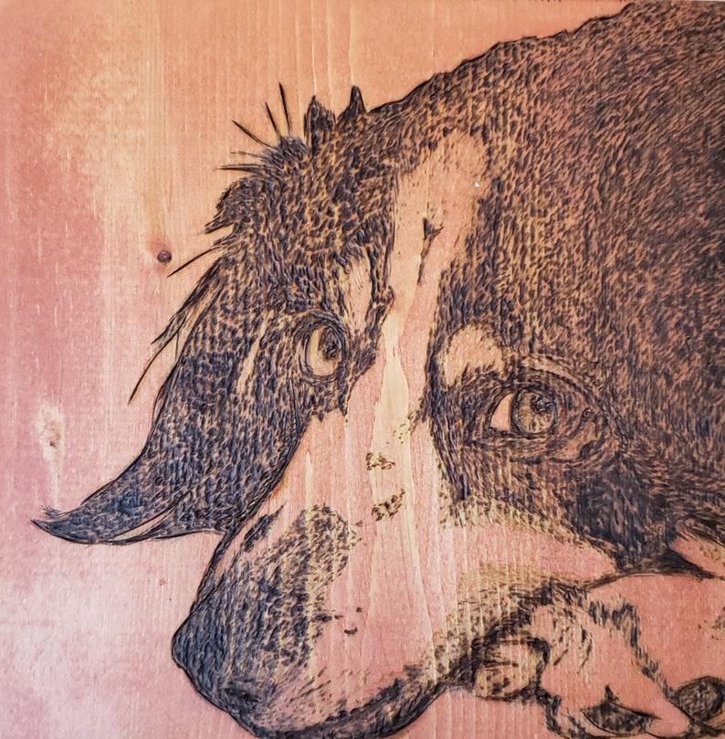 Pet Portraits Wood-burned on Wood Panel