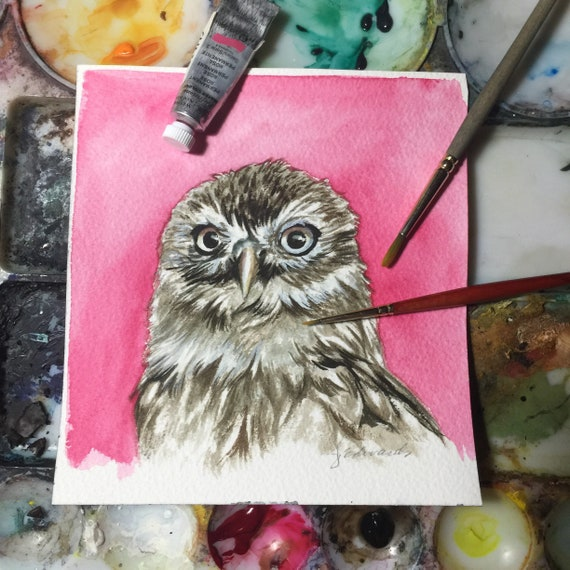 Owl Portrait - study of a Little Owl - Original Watercolour