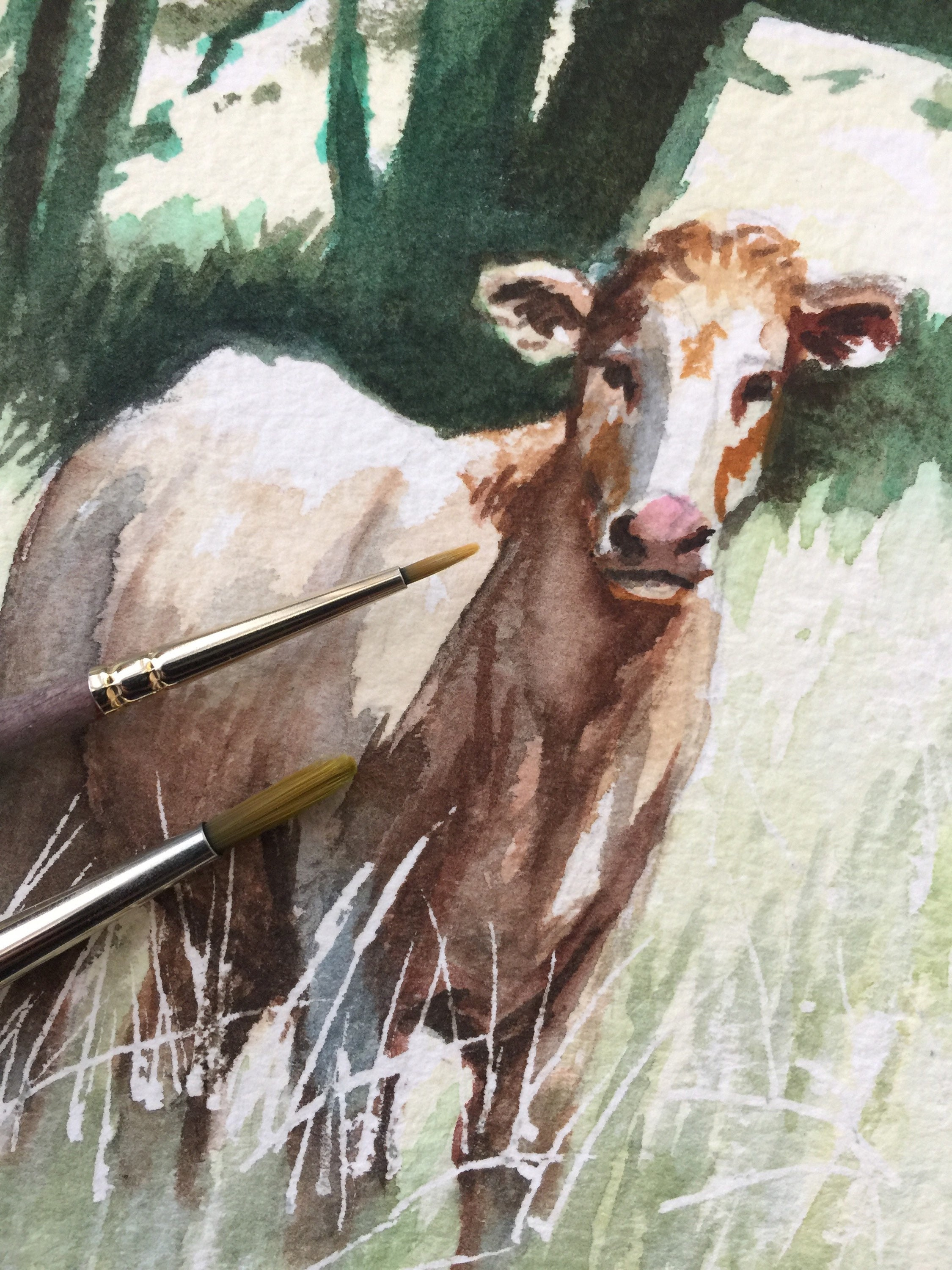 Cow In A Field Original Watercolour Study Etsy